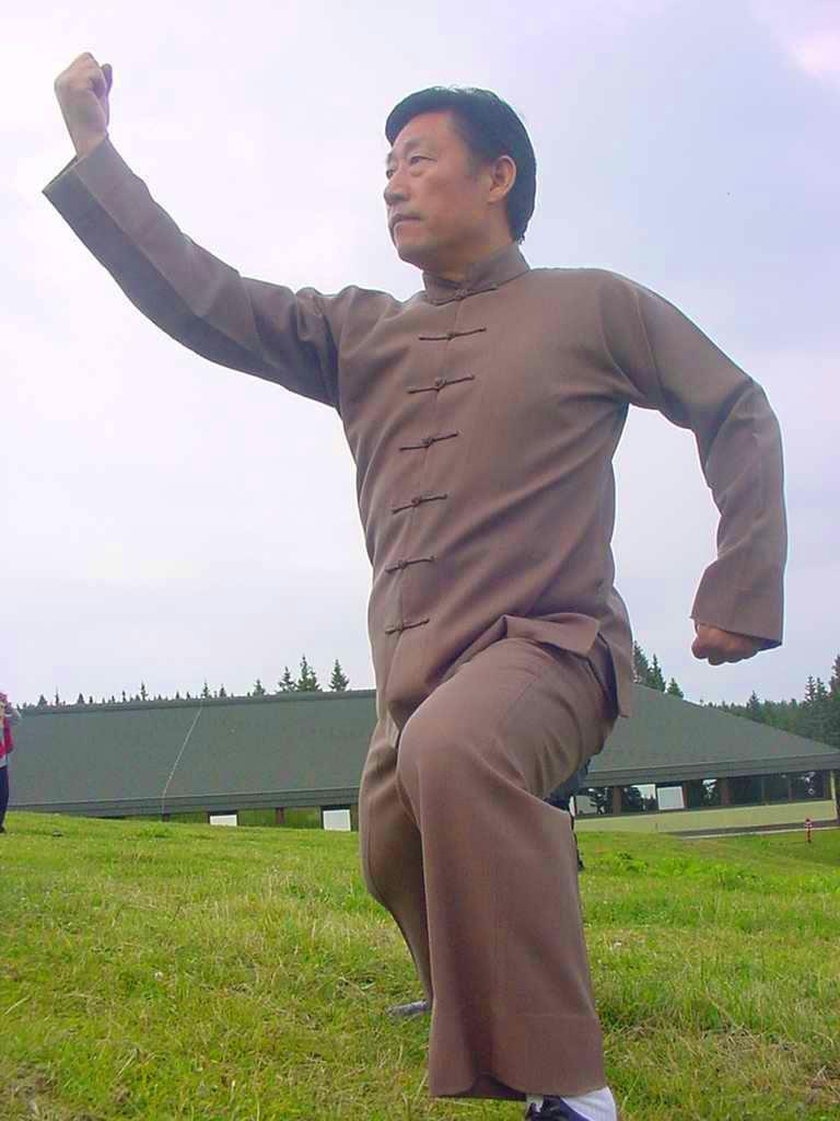Тайчи форма - демонстрация
