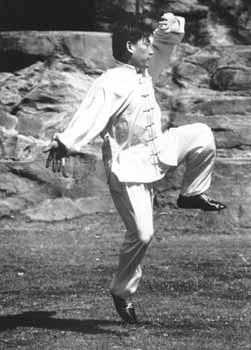 Тай Дзи използвано едновременно за здраве и като бойно изкуство