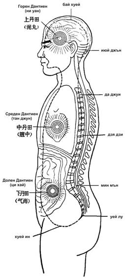 Схема на човешко тяло с трите дантиен центъра и основни акупунктурни точки