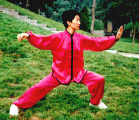 Small Frame of Tai Chi