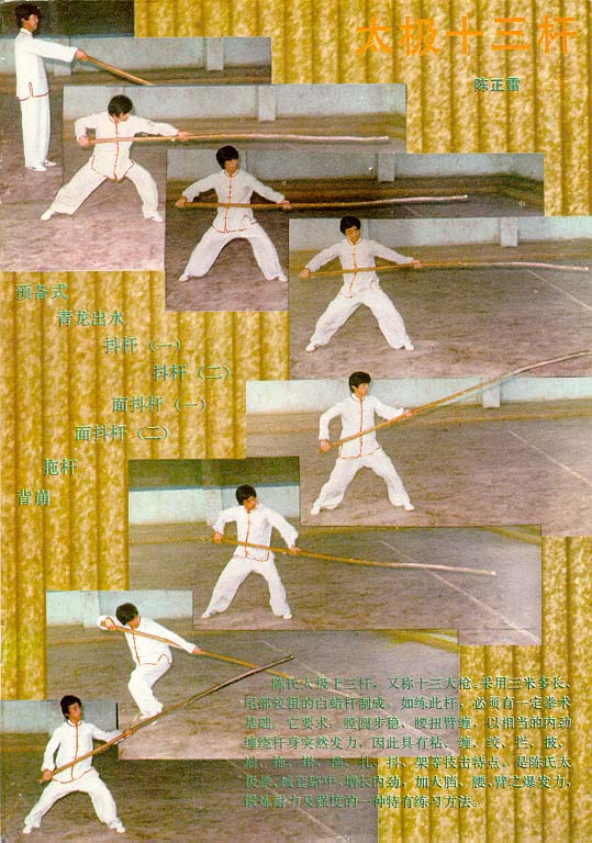 Chen Zenh Lei Training