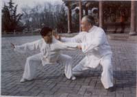 Два бойца практикующих тайцзи