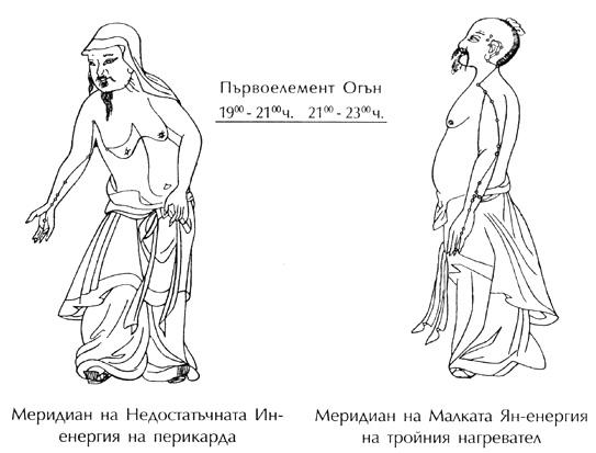 Меридияни на перикарда и на тройния нагревател