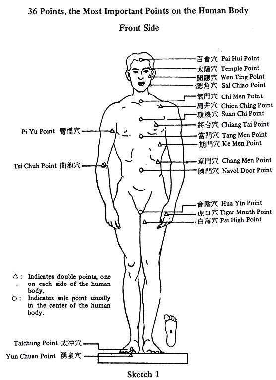 36 най-важни акупунктурни точки в човещкото тяло - отпред