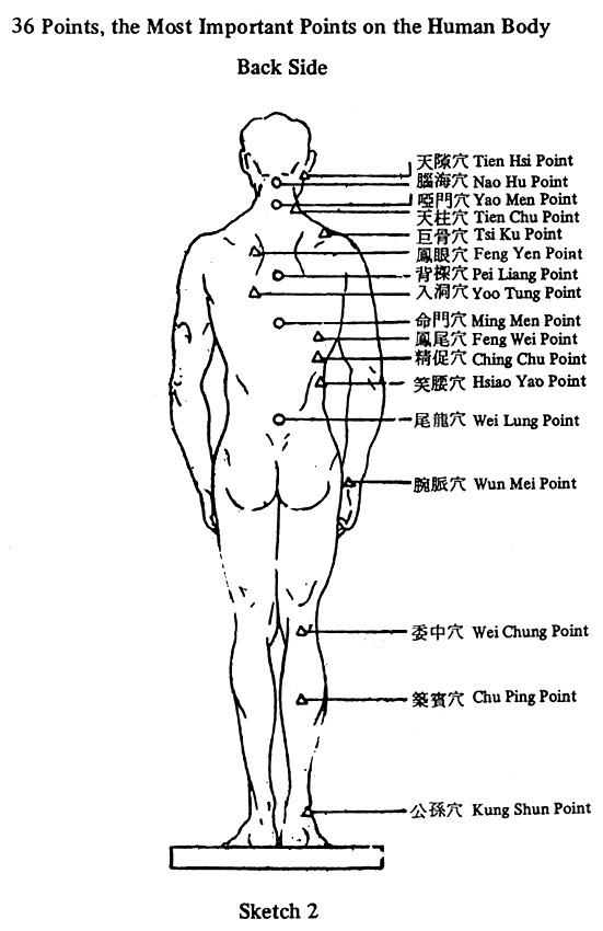 36 най-важни акупунктурни точки в човещкото тяло - отзад
