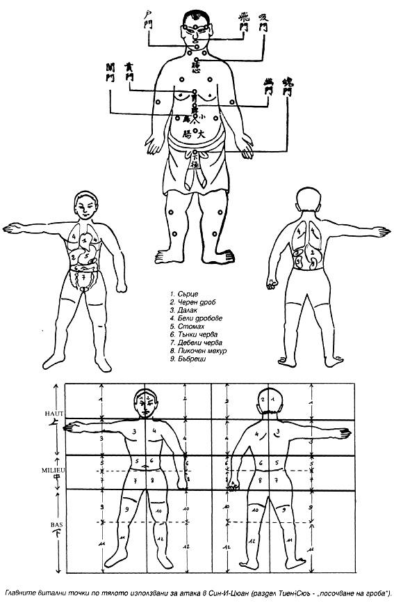 Главните витални точки по тялото