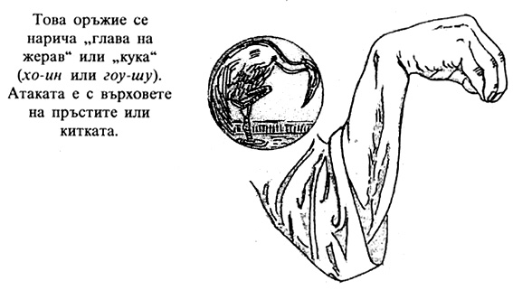 Глава на жерав