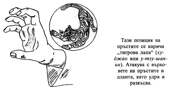 Тигрова лапа