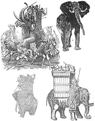 Използване на бойни слонове на бойното поле